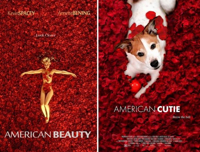 American Beauty (IamIrene/Imgur)
