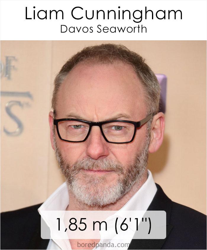 Liam Cunningham/Davos Seaworth (boredpanda.com)
