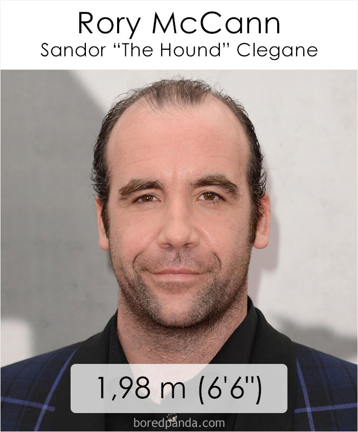 Rory McCann/Sandor The Hound Clegane (boredpanda.com)