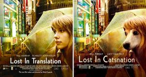 Lost in Translation (IamIrene/Imgur)