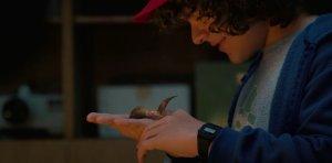 Dustin (Stranger Things/Netflix)