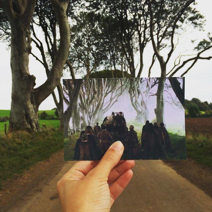 The Dark Hedges - Irlanda del Nord (Andrea David)