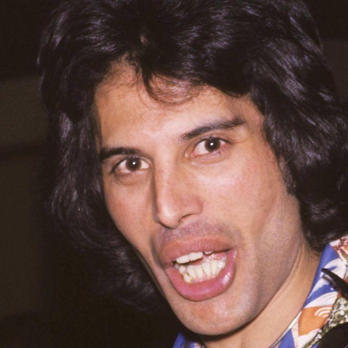 Freddie Mercury (Brad Elterman)
