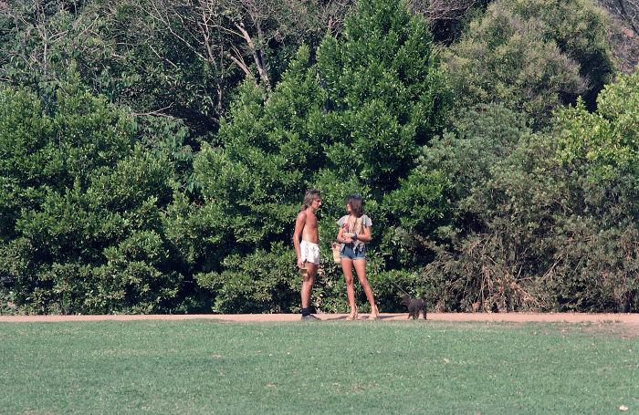 Rod Stewart, 1976 (Brad Elterman)