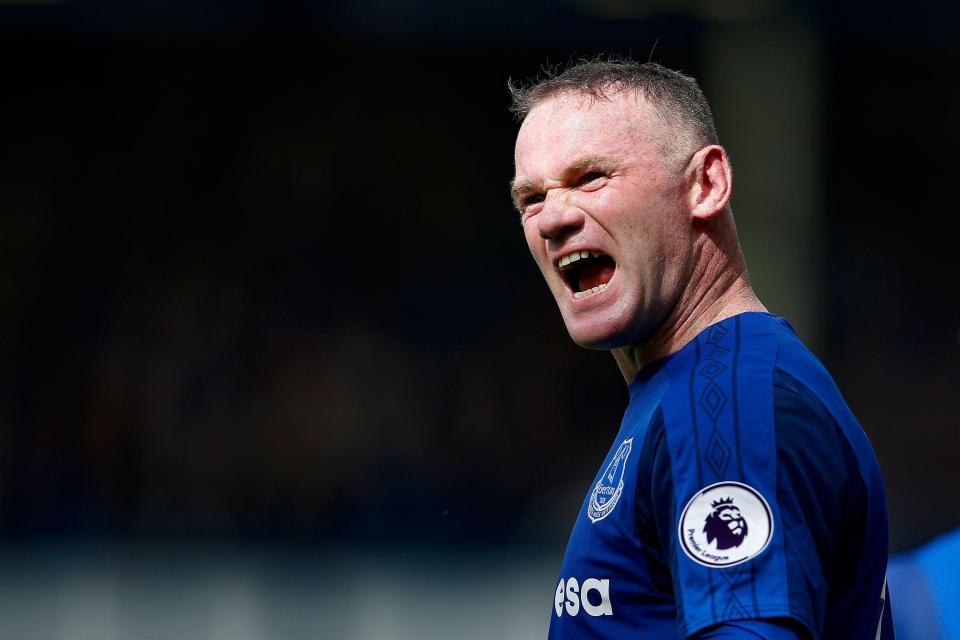 Wayne Rooney (REX Features)