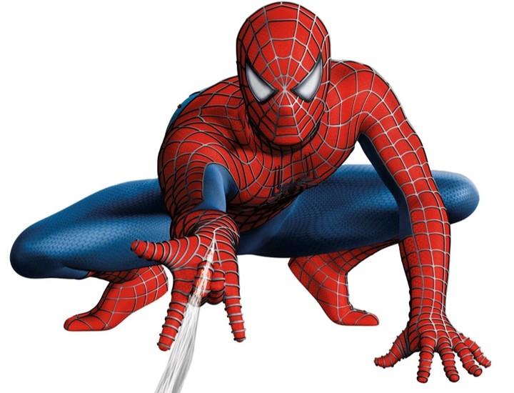 Spider Man (Marvel)